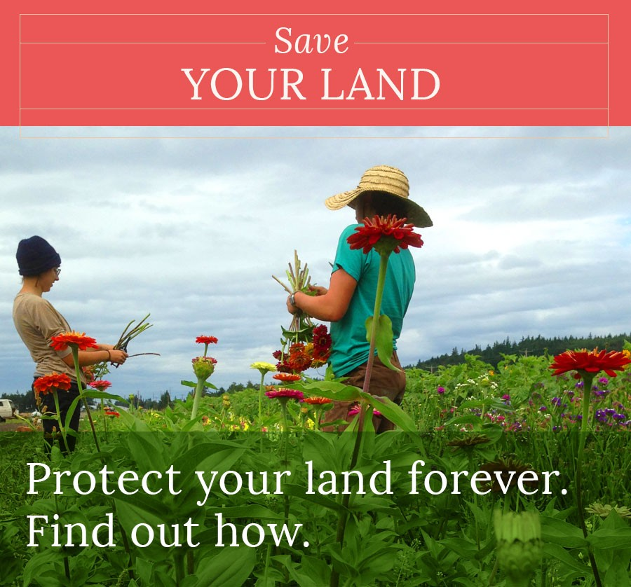 button-save your land