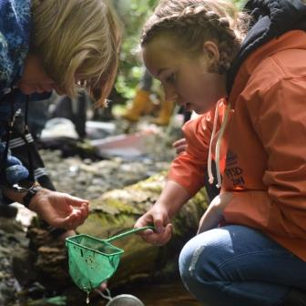 Blue Heron students surveyed microinvertebrates in Snow Creek. Credit Caitlin Battersby