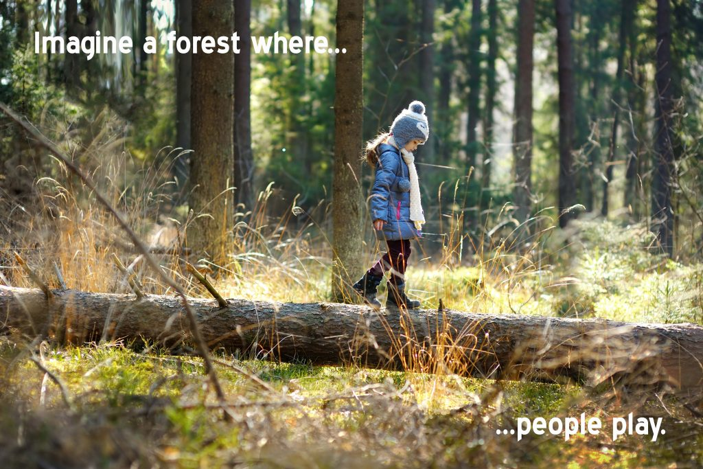Imagine a forest where people play.