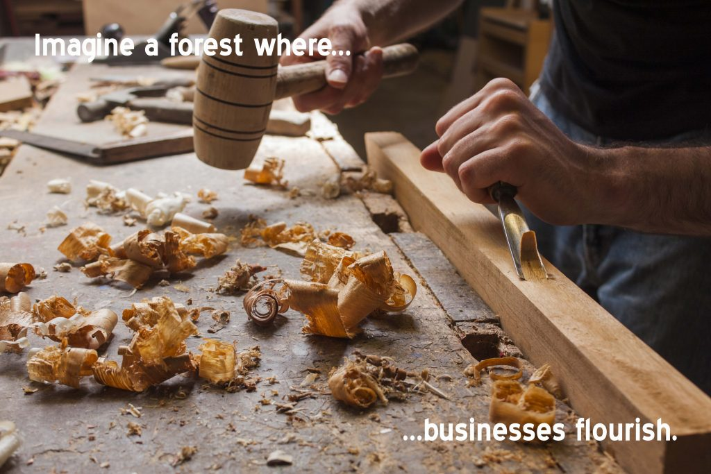 Imagine a forest where businesses flourish.