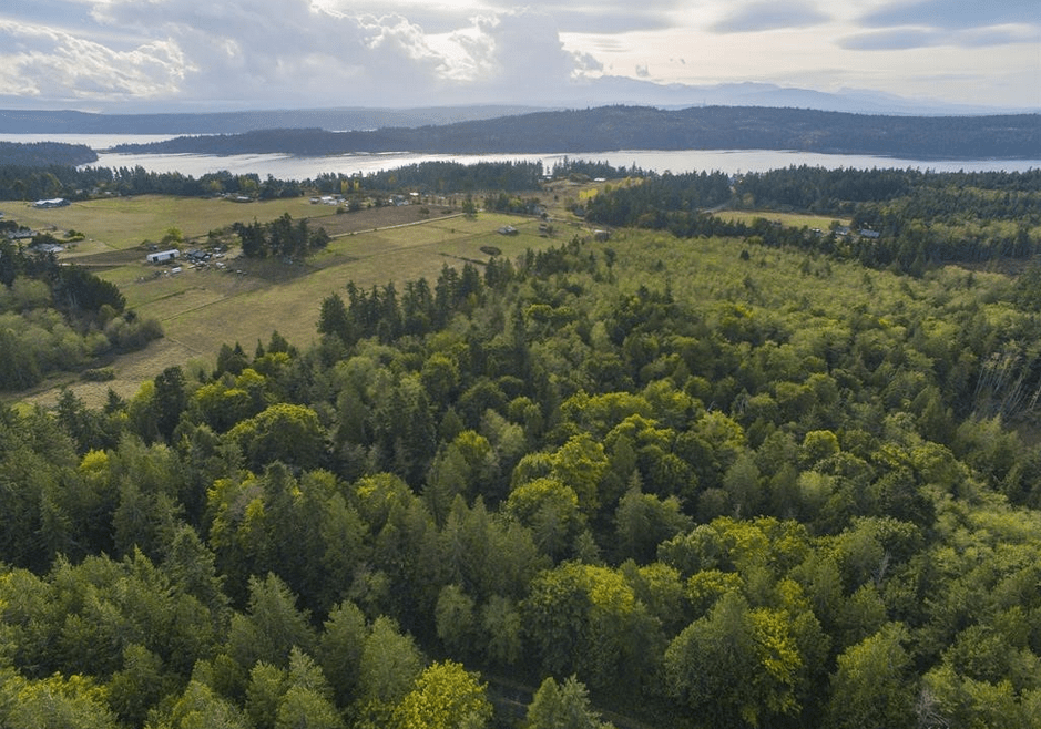 Aerial View of Fite Property