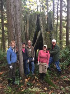 Tree stump group shot
