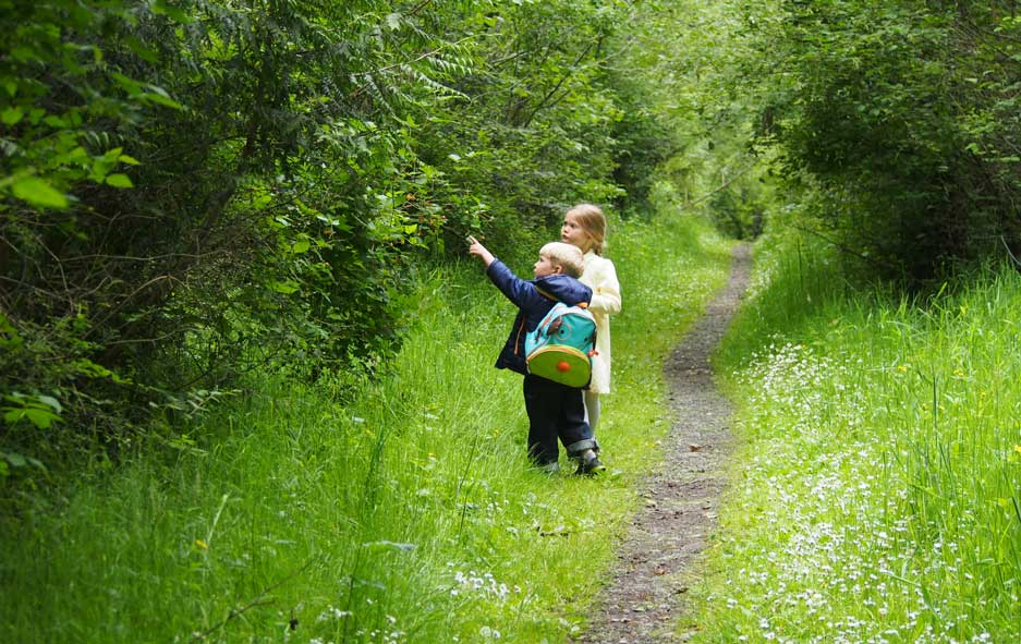 Young explorers enjoy a trail