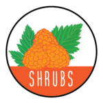 Shrubs exploration icon