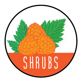 Shrubs icon