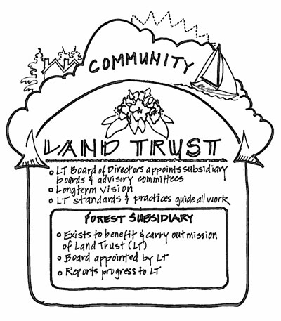 Chimacum Ridge Community Forest Governance Sketch