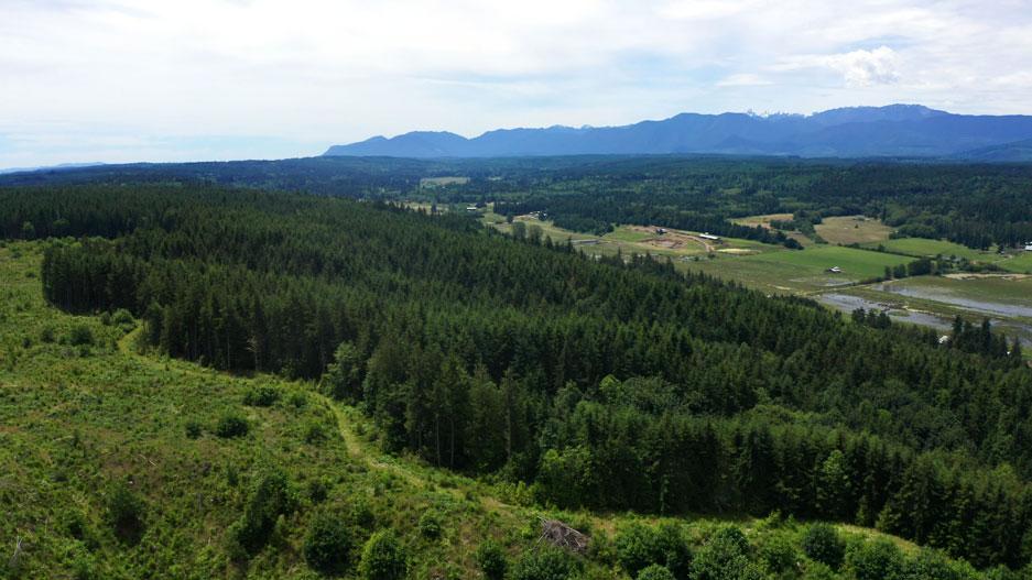 Aerial view of Chimacum Ridge by John Gussman