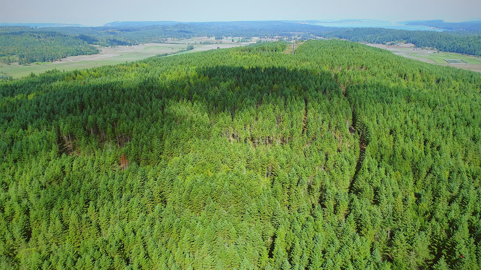 Aerial view of Chimacum Ridge by EFM