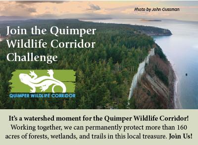 Quimper Wildlife Challenge Image