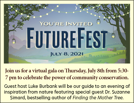FutureFest invitation image for homepage