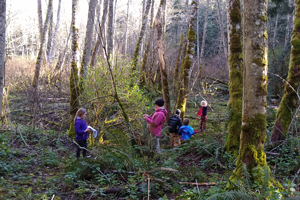 Two adults and three children stand in the woods, examining plants and trees.