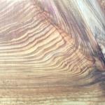 Photo of Western redcedar wood grain