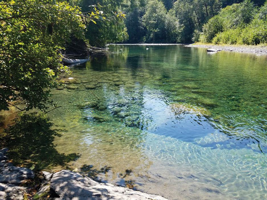 Photo of the Duckabush River by Robert Tognoli.