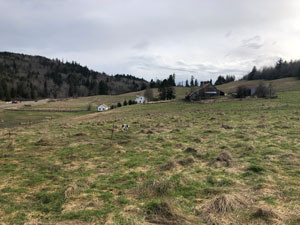 Open farmland with buildings in far ground.