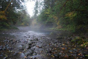 Duckabush River